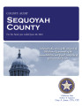 SEQUOYAH COUNTY, OKLAHOMA FINANCIAL STATEMENT AND INDEPENDENT AUDITOR'S REPORT FOR THE FISCAL YEAR...