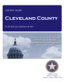 CLEVELAND COUNTY, OKLAHOMA FINANCIAL STATEMENT AND INDEPENDENT AUDITOR'S REPORT FOR THE FISCAL...