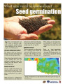 What you need to know about... seed germination